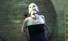 Roxy Lee nipple-clamped whipped dildoed vibed